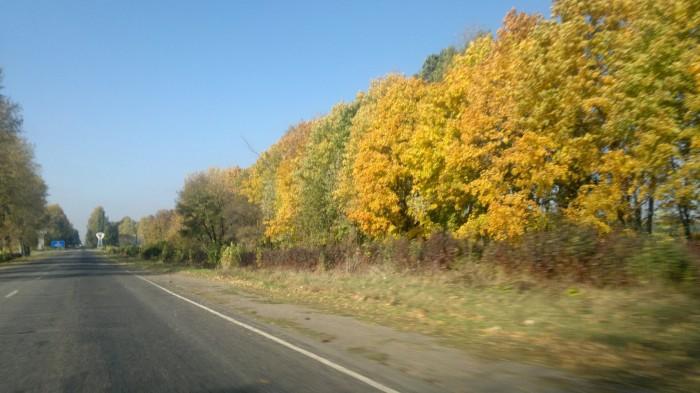 Умань - Винница (М12). Красиво тут осенью