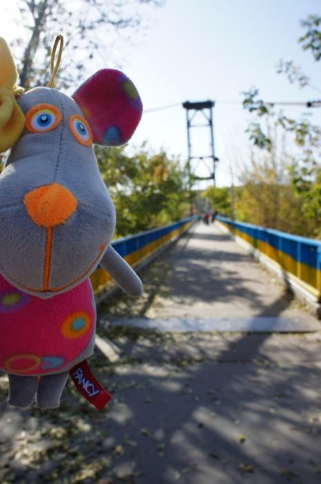 #Кетти это пешеходный мост понравился. Он очень высокий, и пейзажи красивые
