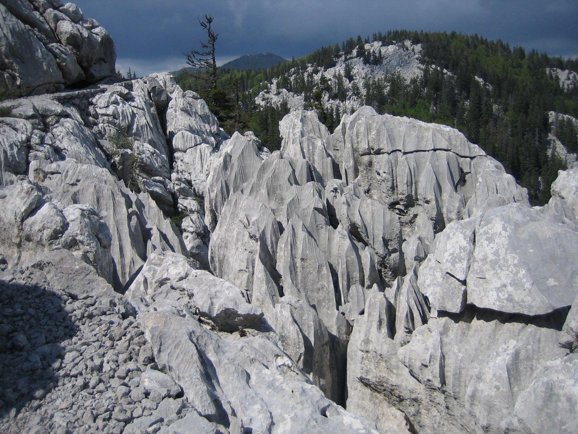 Karstformationen Nationalpark-Nord-Velebit.JPG